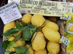 citroenboompje Zeist
